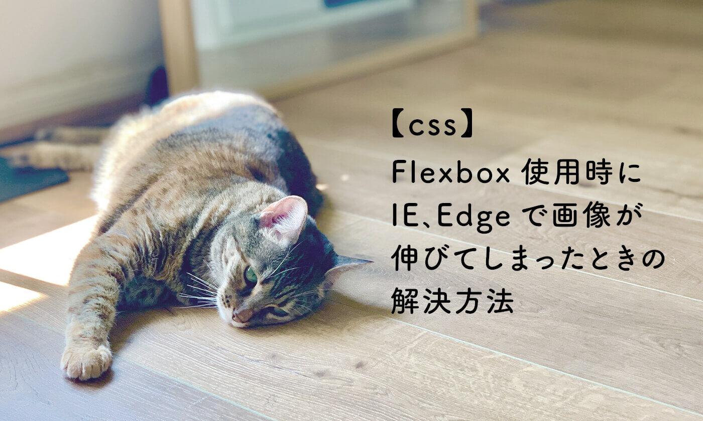 Flexbox使用時にIE、Edgeで画像が伸びてしまったときの解決方法