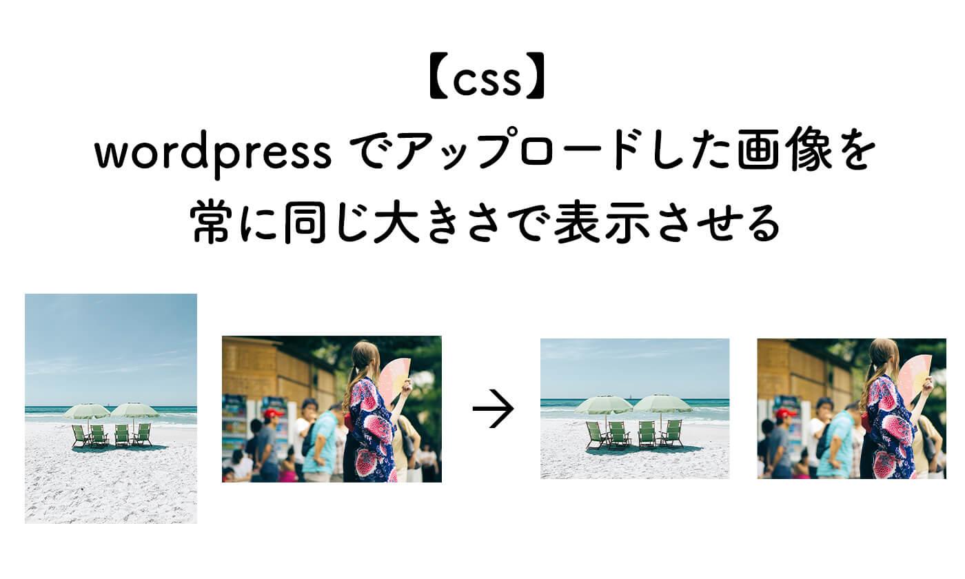【css】wordpressでアップロードした画像を常に同じ大きさで表示させる